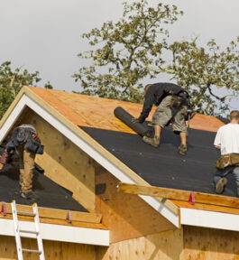 Papy i folie na dach